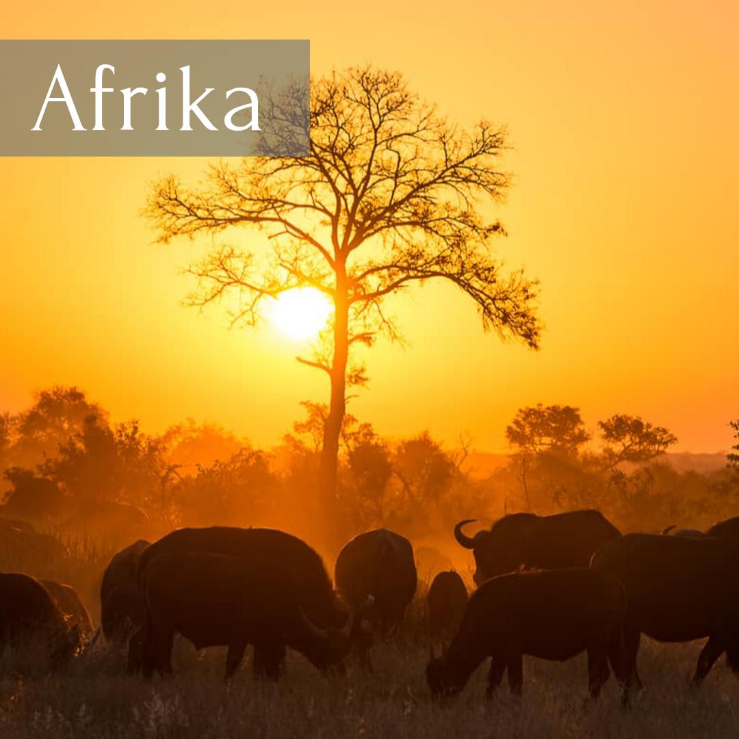 Afrika (1)